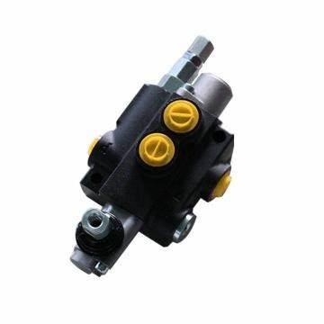 New Rexroth Hydraulic Pump A2fo for Sale Direct From Factory