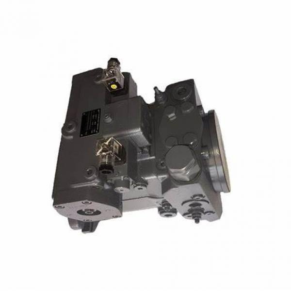 Rexroth A2fo Series Axial Fixed Hydraulic Piston Pump Used for Excavator and Pressing Machinery #1 image