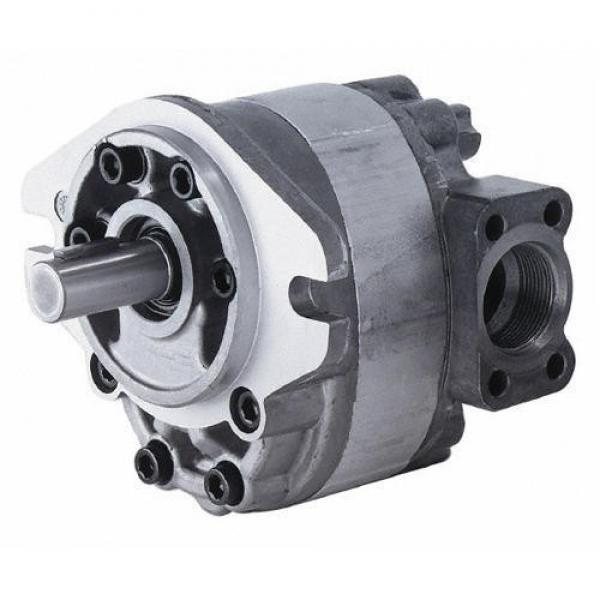 Parker F11 F12 Hydraulic Pump Motor F11-005 F11-006 F11-010 F11-012 F11-014 F11-019 F11-150 F11-250 for volvo #1 image